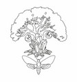 magic tree line drawing mystical witch tree vector image