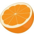 Orange cut in half Citrus isolated on white vector image vector image