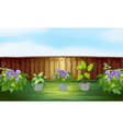 Plants in the backyard vector image