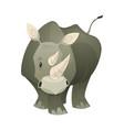 rhino strong rhinoceros savannah gray animal vector image