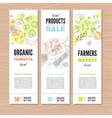 set banners with organic vegetables vector image