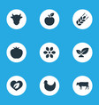 set of simple icons elements dairy vegetables vector image vector image