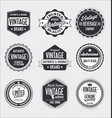 vintage labels and badges collection vector image