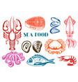 various seafood set of fish vector image