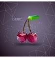 Bright cherry polygon vector image vector image