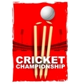 Cricket stumps and bails hit by a ball vector image vector image