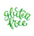 gluten free conceptual handwritten phrase vector image vector image