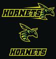hornets team mascot vector image
