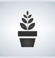 plant pot icon growing concept isolated on white vector image vector image