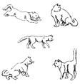 Cats A sketch by hand Pencil drawing vector image