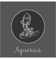 aquarius astrological zodiac symbol horoscope vector image