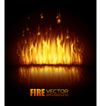 Fire digital design vector image