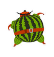 funny brave watermelon cartoon character man in vector image vector image
