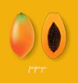 papaya yellow background vector image vector image
