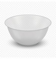 realistic bowl isolated vector image