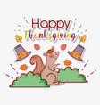 squirrel animal with autumn leaves and hats vector image vector image