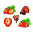 strawberry set vector image vector image