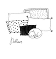 Beautiful pillows and cute cat on a white