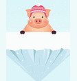 little pig in hat standing behind snowy rock vector image vector image