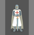 of templar knight with sword vector image