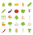 Vegetables icons flat design vector image vector image
