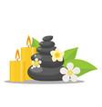 zen stones and flowers vector image
