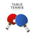 3d table tennis ping-pong rocket with ball vector image vector image