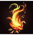 abstract fire vector image