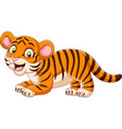 cartoon funny baby tiger vector image vector image