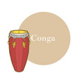 colored conga in hand-drawn style vector image vector image
