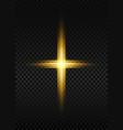 cross light shiny cross with golden frame sign vector image