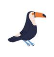 cute toucan or tucan funny tropical bird with vector image vector image