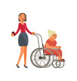 grandmother in wheelchair vector image vector image
