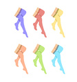 Legs with pantyhose vector image