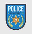policeman badge police security blue medallion vector image