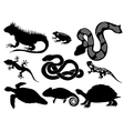 set of silhouettes of reptiles vector image vector image