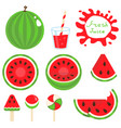 set watermelon vector image