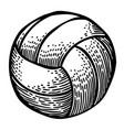 cartoon image of volleyball icon sport symbol vector image