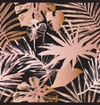 abstract tropical summer background fan palm vector image vector image