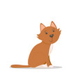cute sitting cat kitten cartoon vector image