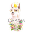 lama drama queen cool t shirt design with quote vector image