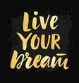live your dream poster with hand drawn lettering vector image