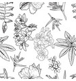 Pattern of hand drawn exotic tropical flowers