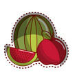 sticker watermelon and apple fruit icon vector image vector image