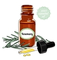 Bottle of Rosemary essential oil with dropper vector image vector image