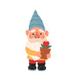 colorful cute garden gnome vector image vector image