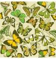 GREEN BUTTERFLY WALLPAPER vector image