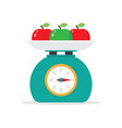 kitchen scales and apples vector image