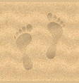 sand beach vector image vector image