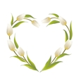Tulip heart frame vector image